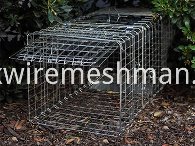 welded-mesh-animals-trap